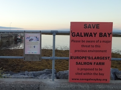 Ballyvaughan Pier, SAVE GALWAY BAY (click pic)
